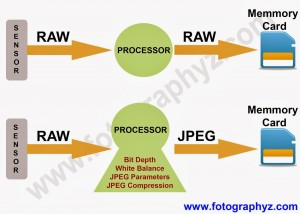 JPEG vs RAW[1]